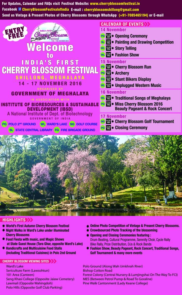 poster-cherryblossomfestival