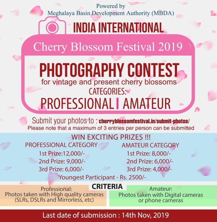 Cherry Blossom 2019 ad